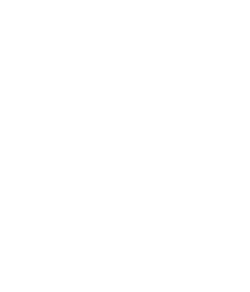 Strong Mind logo